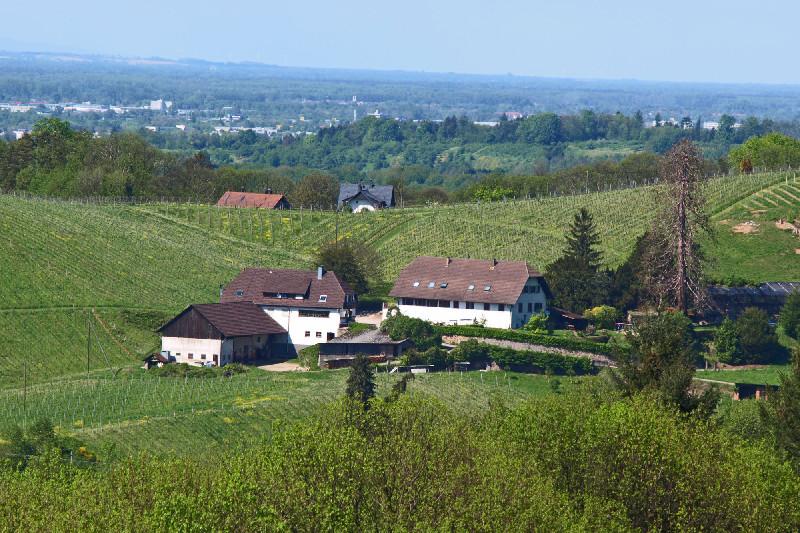Klosterschänke Schelzberg