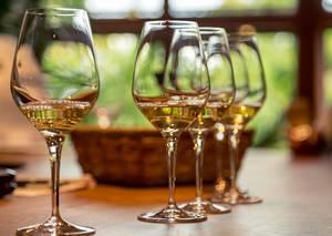 Weingut und Besenwirtschaft Bauer
