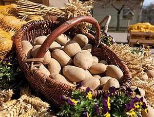 Kartoffelhof Gerlind Neumann