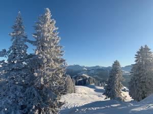 Winterstimmung neben dem Berghaus