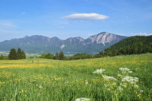 Alpengasthof Kreut-Alm