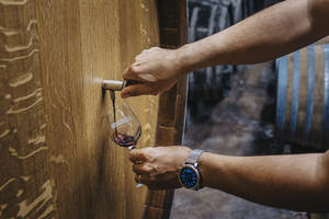 Weingut Ökonomierat Herber