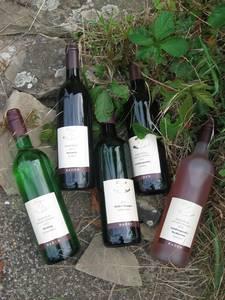 Weingut Uhler und Blank