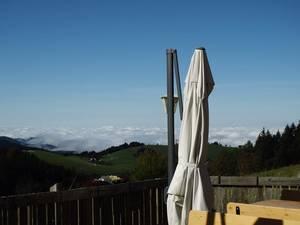 Holzschlägermatte view