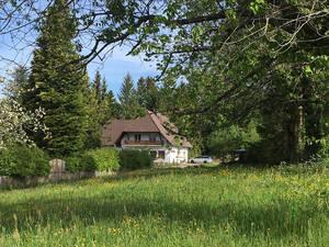 Gasthaus Der Waldvogel