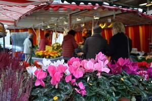 Wochenmarkt Waibstadt