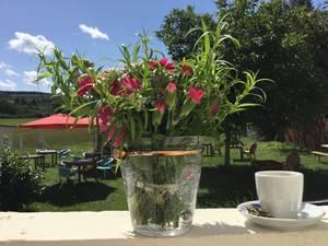 Cafe Fräulein Ida