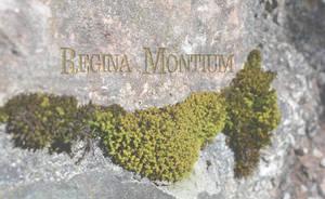 Gourmet Restaurant Regina Montium