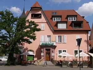 Hirsch, Derendingen
