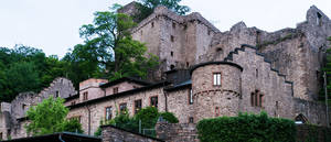 fidelitas im Alten Schloß zu Hohenbaden