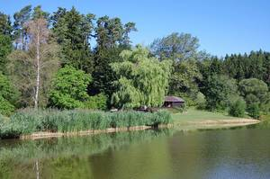 Fischerheim am Linsenbergweiher