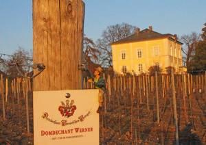 Blick aus den Weinbergen auf das Anwesen