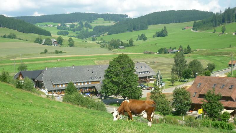 Schwarzwaldgasthaus zum Löwen