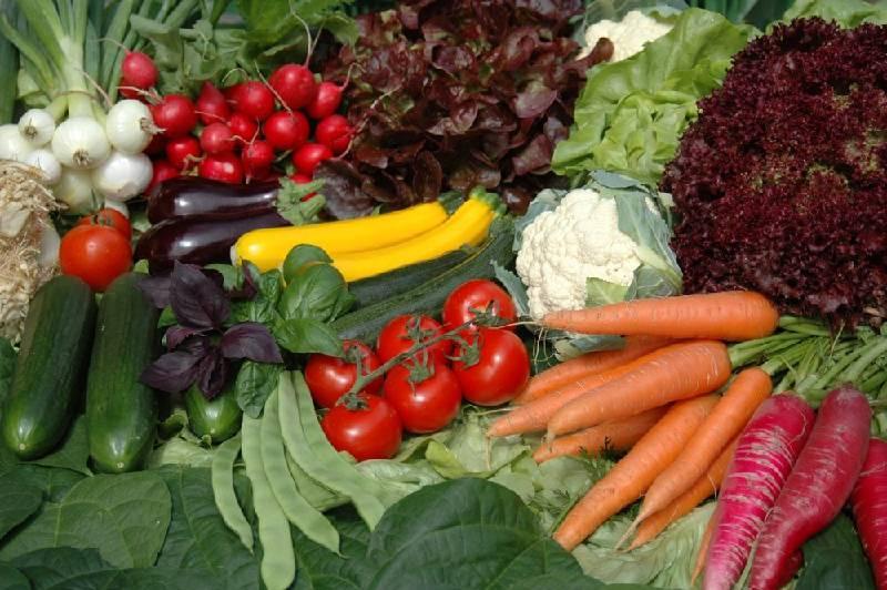 Frisches Gemüse von der Höri