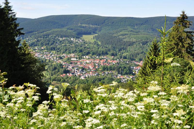 Gasthaus und Pension Haus am Berg