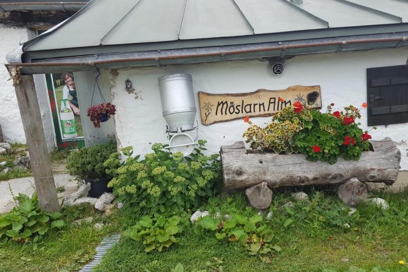 Möslarnalm - © Chiemsee-Alpenland Tourismus
