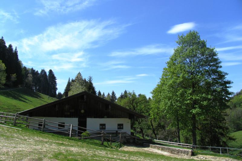 Herrenalm - © Chiemsee-Alpenland Tourismus
