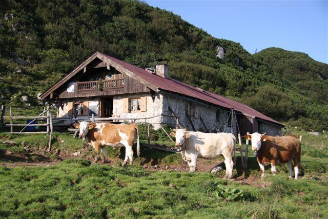 Rossalm - © Chiemsee-Alpenland Tourismus