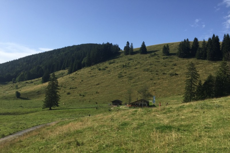 Maisalm - © Chiemsee-Alpenland Tourismus